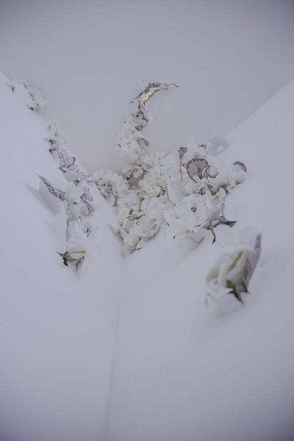 Modelo invasivo (1). De Carla Giménez y Alejandro Llobet