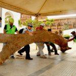 Simposio Internacional de Escultura